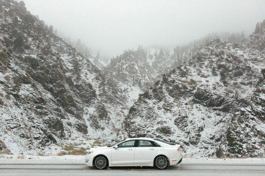 winter pic