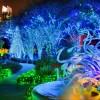 christmas-lights-atlanta-li4bbvqe